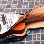 Guitar Case - Blue Fish - opened